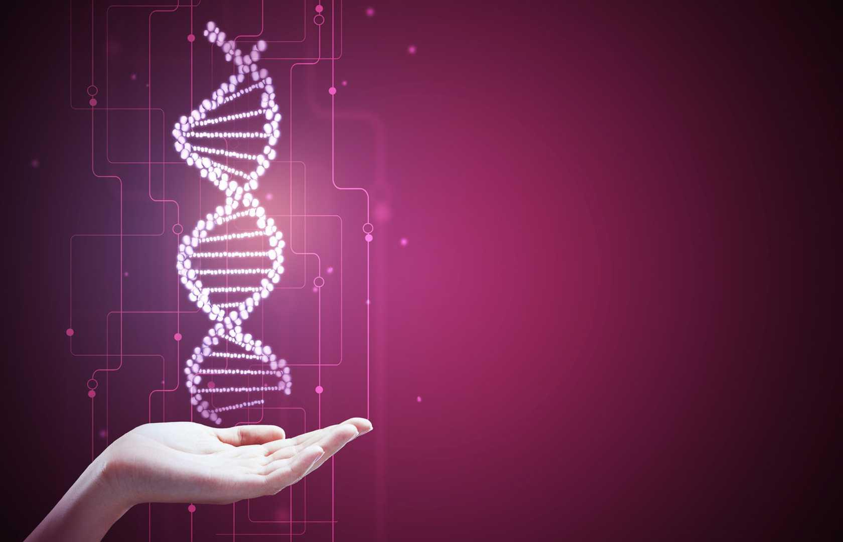Génétique et évolution | Pearltrees