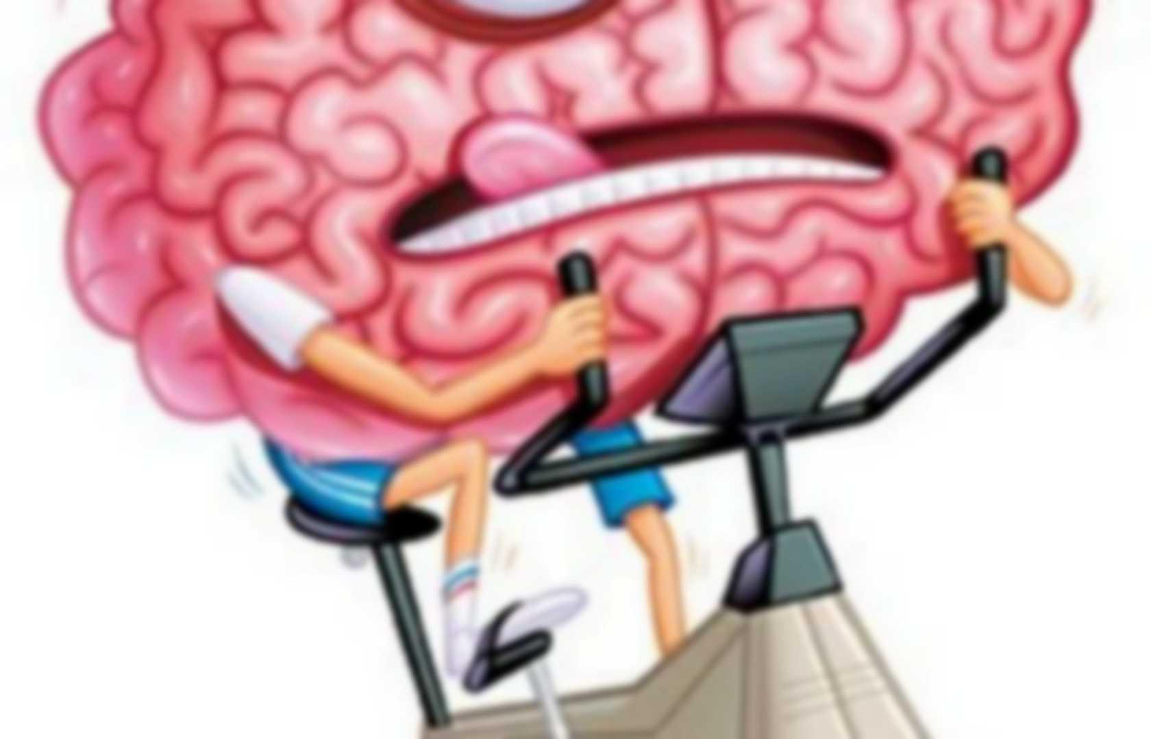 Brain exercise games - brain stuff | Pearltrees