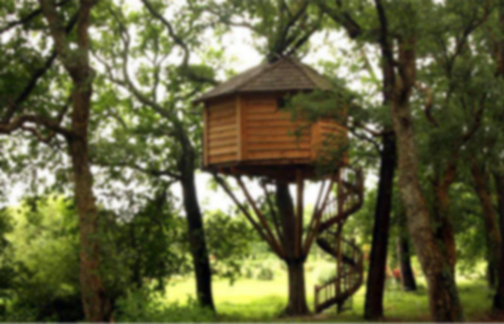 Cabane Dans Les Arbres Pearltrees