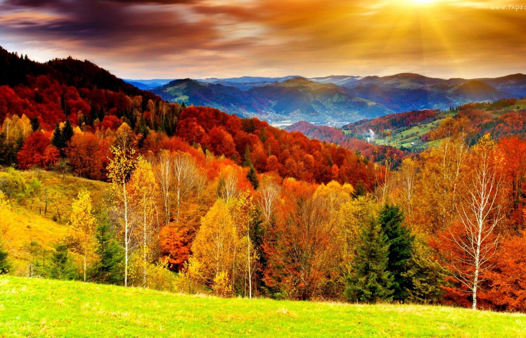 Jesień Pearltrees