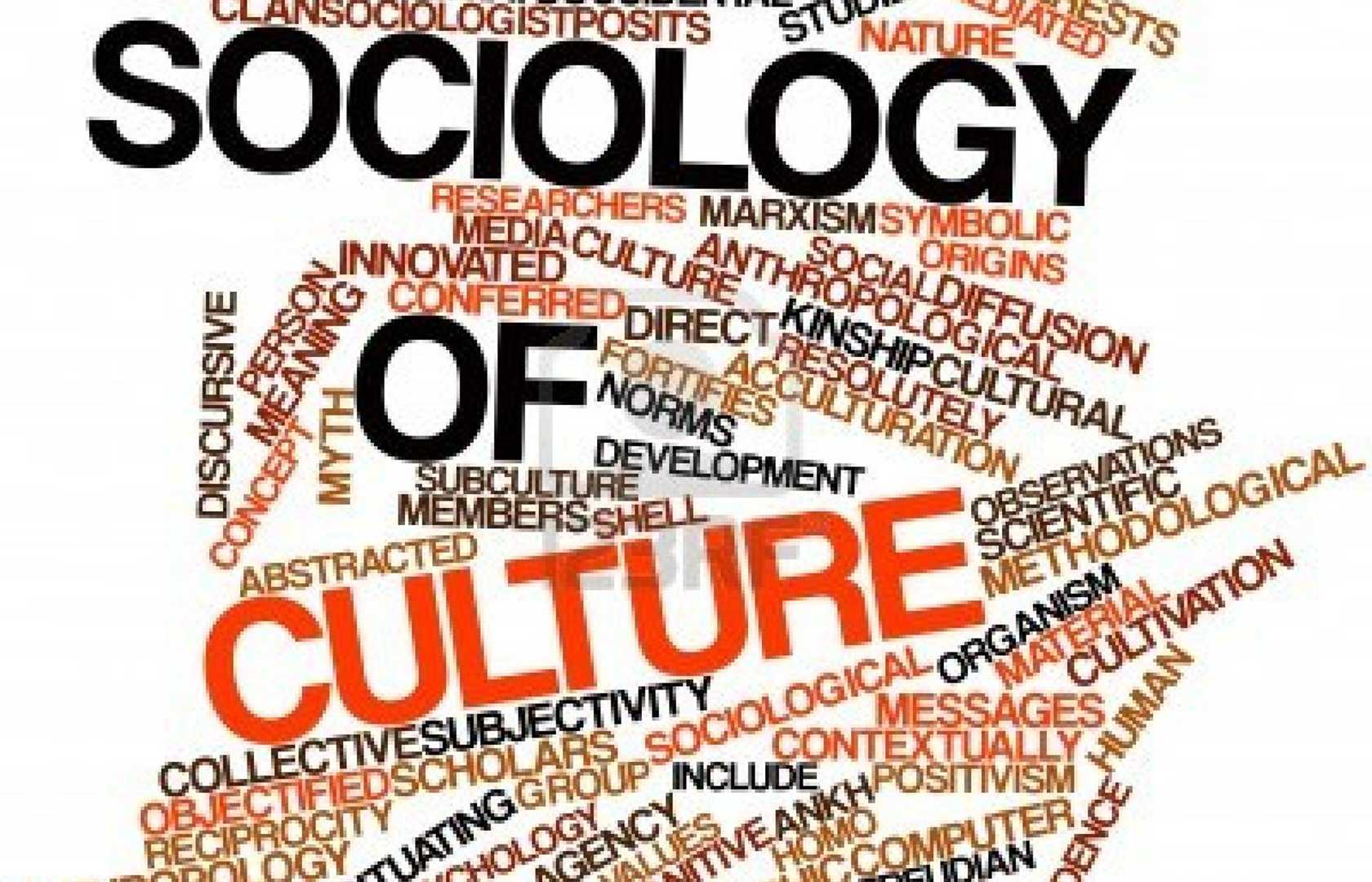 sociology cultural and social organisation Definition of social organization, organization and individual, introduction to sociology, sociology guide.