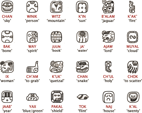 8 Words from Nahuatl