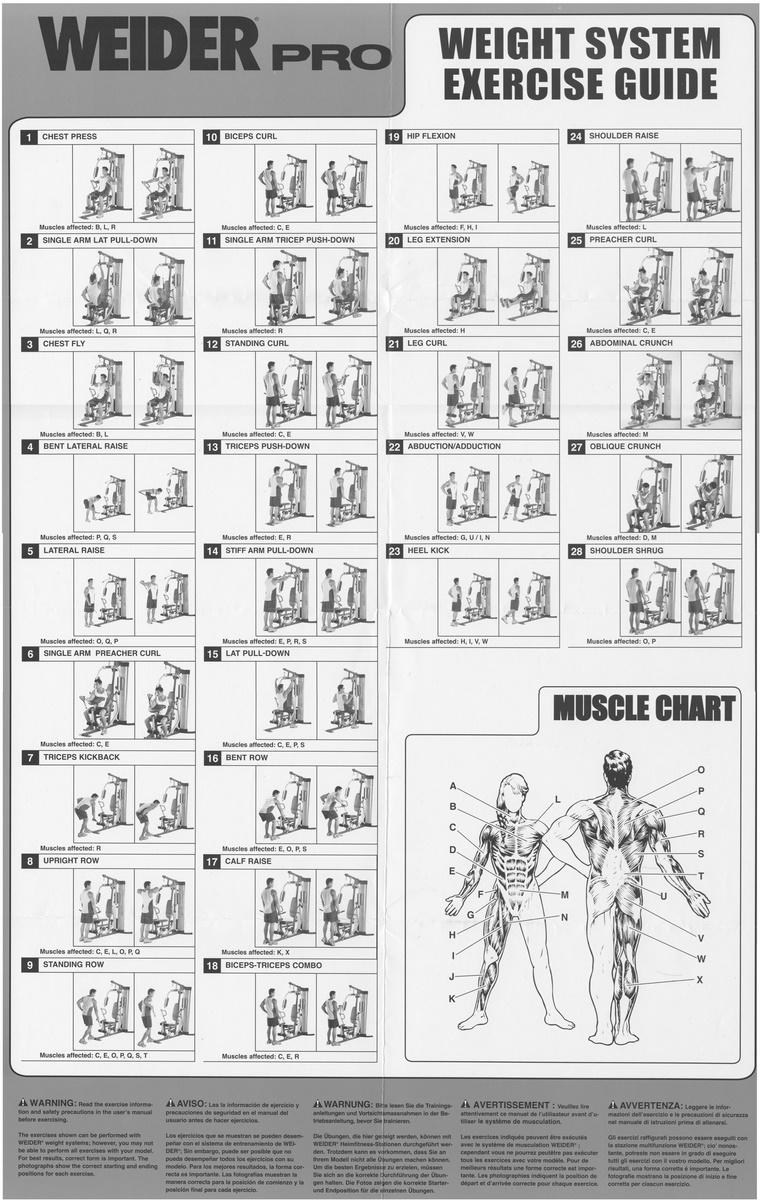Célèbre Exercices Weider Pro 4000 | Pearltrees SN86
