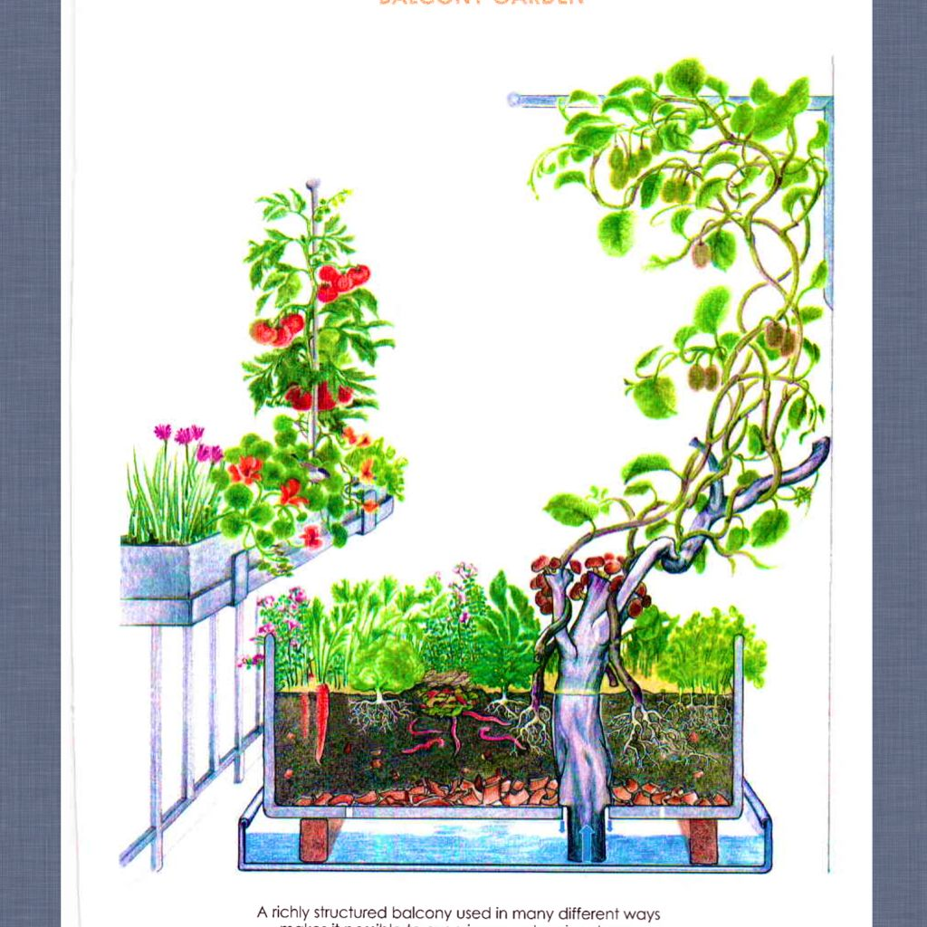 holzer 39 s permaculture balcony design pearltrees