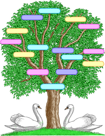 the importance of online family trees often lies in their uncertaintyin creating a digital family tree