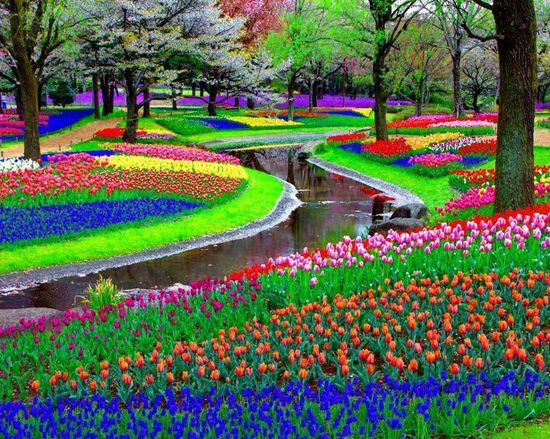 Jardin color pearltrees for Salon de jardin colore