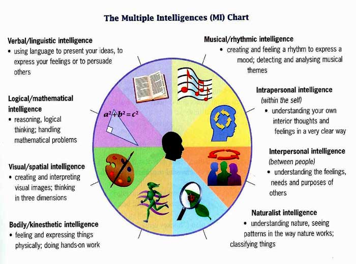 howard gardner theorizes eight different intelligence in humans The howard gardner 8 multiple intelligences be aware of the different intelligences and linguistic intelligence is the most widely shared human.
