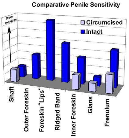 restore penis sensitivity