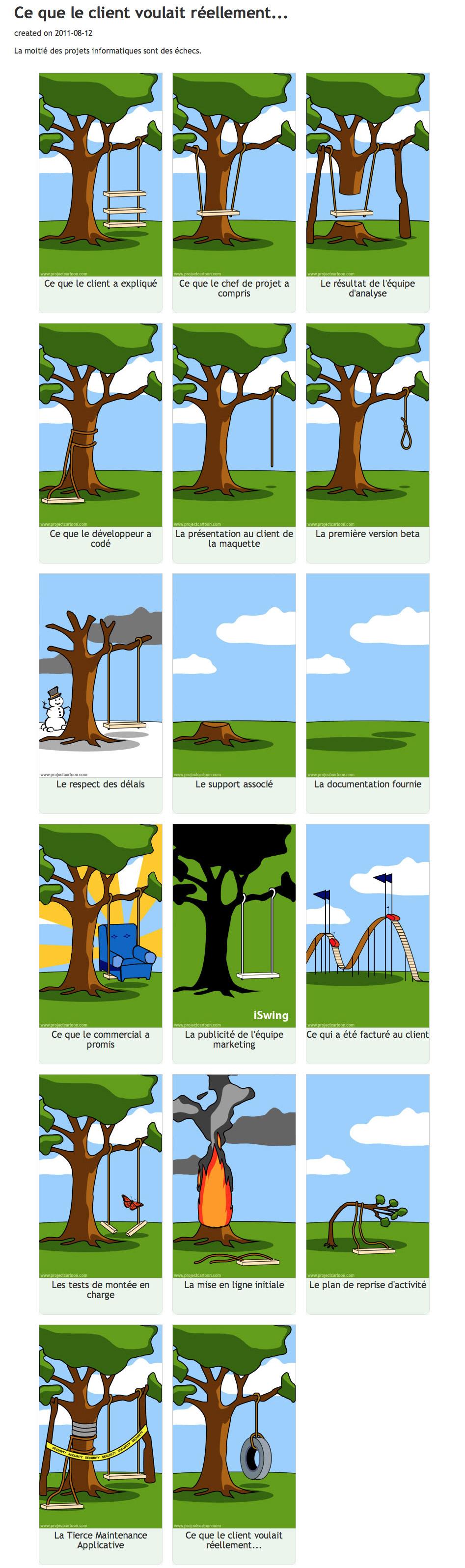 Project Cartoon Ce Que Le Client Voulait R 233 Ellement