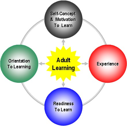an analysis of andragogy in adult education systems Adult education research conference 2013 conference proceedings andragogically building a doctor of andragogy program,adult education market analysis.
