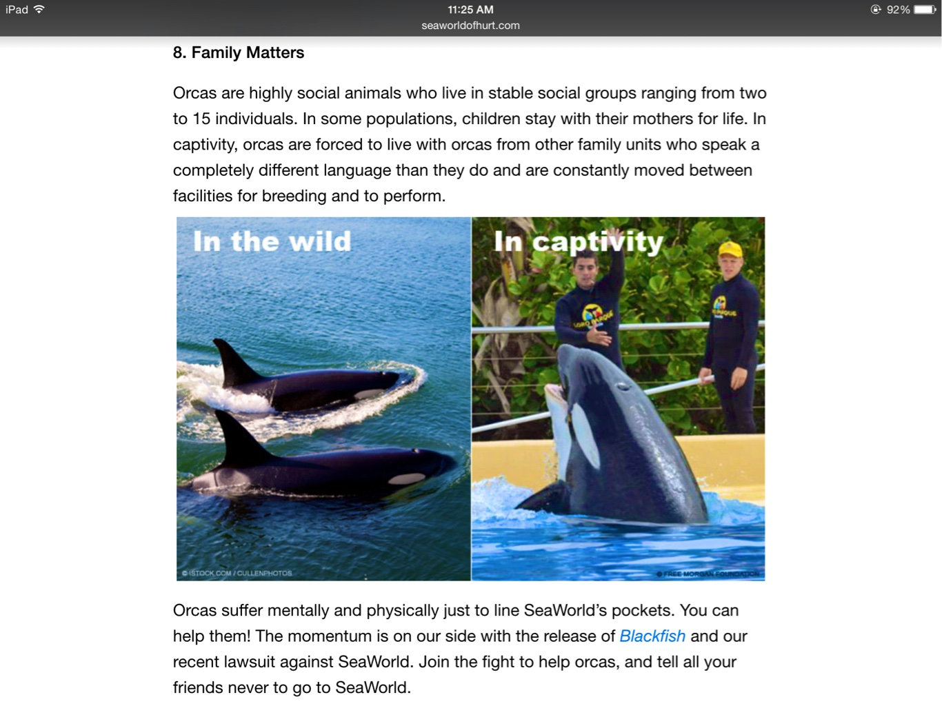the negative effects of captivity to wild orcas The truth about wikie, the talking orca of the psychologically damaging effects of captivity on these at all of orcas being aggressive to humans in the wild.