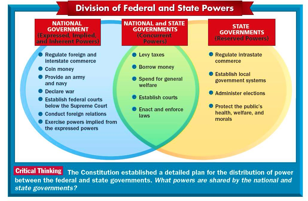 Federalism Chart Or Diagram Wiring Library